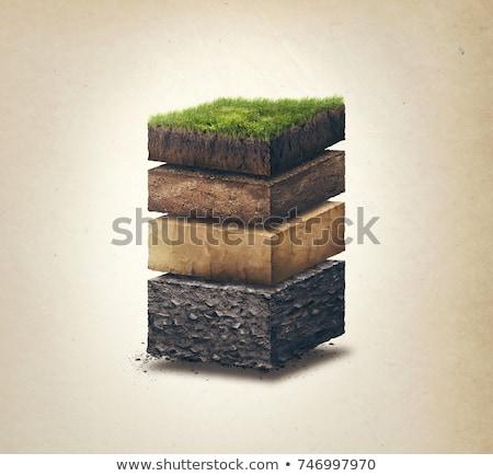 Subterráneo suelo capas sección transversal real tierra Foto stock © klikk