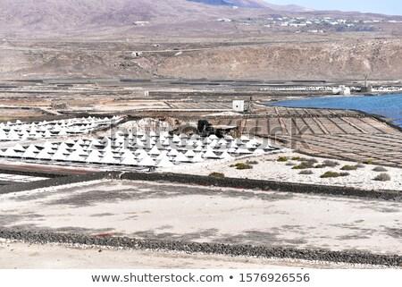 pattern of field in Salt refinery, Saline from Janubio Stock photo © meinzahn