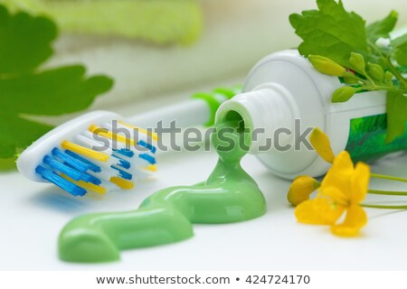 Green Toothbrush With Herbal Toothpaste Stock photo © PetrMalyshev