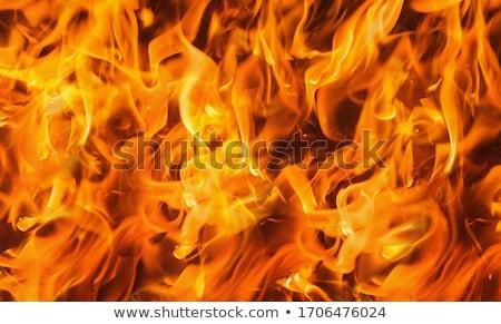 vulkanisch · uitbarsting · geïsoleerd · illustratie · witte · groot - stockfoto © bluering