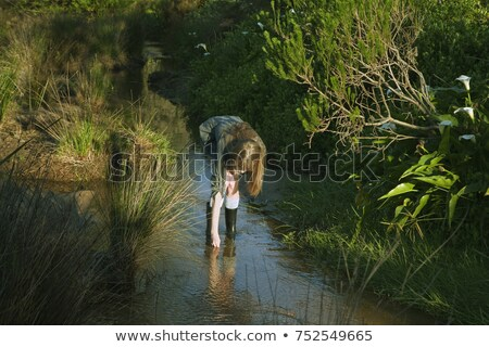 Girl bending down in stream Stock photo © IS2