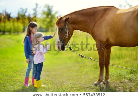 Girl stroking a horse Stock photo © IS2