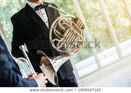 genç · orkestra · yandan · görünüş · iş · moda · arka · plan - stok fotoğraf © is2