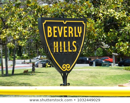Rodeo Drive, Beverly Hills, Los Angeles County, California, USA Stock photo © IS2