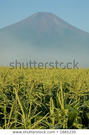 富士山 アイオワ州 しない 典型的な 表示 見える ストックフォト © craig