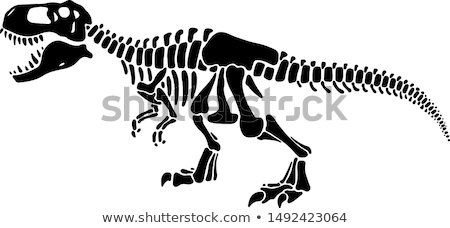 Dinoszaurusz elemek szett illusztráció pár kesztyű Stock fotó © lenm