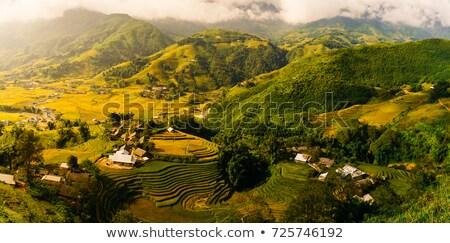 ベトナム · 谷 · 表示 · 黒 · 村 · テラス - ストックフォト © romitasromala