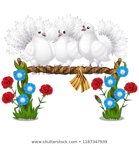 Sketch of a poster with several beautiful white doves sitting on a wicker perch and flowers isolated stock photo © Lady-Luck