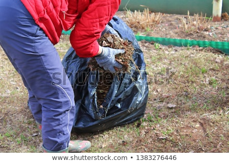 Voluntario mano limpieza basura voluntariado personas Foto stock © dolgachov