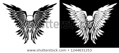 Classic skull and wings vector illustration in both black and white versions Stock photo © jeff_hobrath