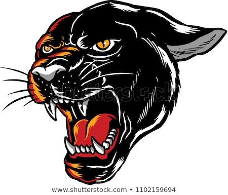 черный · Panther · Cute · улыбаясь · Jaguar - Сток-фото © cthoman