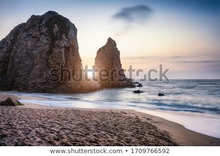 Natura scena rupe Ocean illustrazione panorama Foto d'archivio © colematt