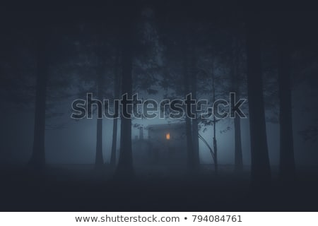 Haunted house in the woods at night Stock photo © colematt