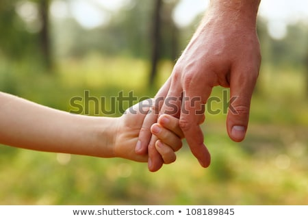 Stock photo: father's hand lead his child son in summer forest nature outdoor, trust family concept