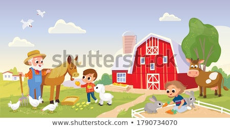 Girl at the farmland Stock photo © bluering