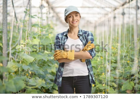 Happy young woman working in a greenhouse Stock photo © deandrobot