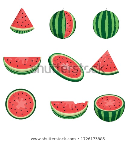 vector set of watermelon stok fotoğraf © olllikeballoon