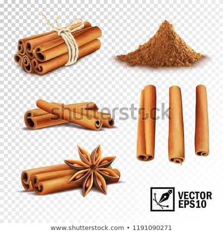 Valósághű fűszer fahéj ánizs csillag izolált Stock fotó © MarySan
