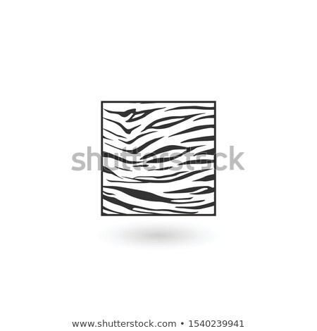 Animal background pattern zebra skin texture in square. Can be used as Logo Design. vector illustrat Stock photo © kyryloff
