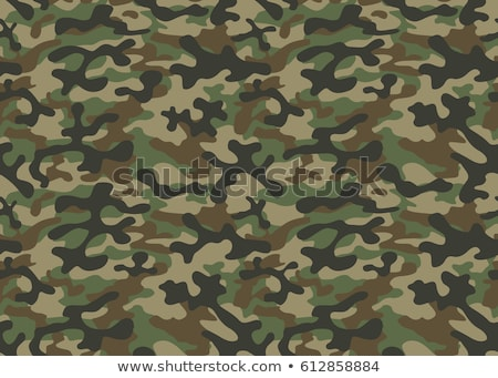 Militaire soldaat leger camouflage uniform pistool Stockfoto © jossdiim
