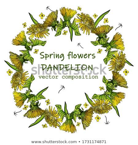 Dandelion frame Stock photo © sahua