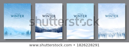 mistig · winter · landschap · bomen · zwaar - stockfoto © peterveiler