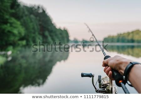 água · doce · pescaria · vara · de · pesca · linha · fora - foto stock © peterveiler