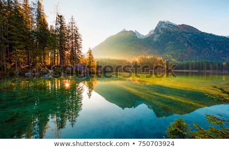 Lago luz poucos árvores Foto stock © peterveiler