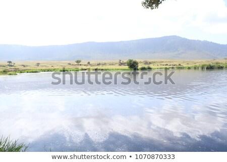 Great Rift Valley in Uganda Stock photo © prill