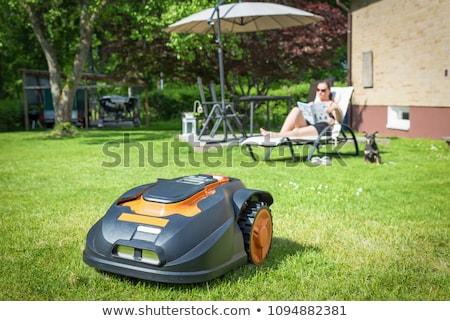 Robot lawn mower Stock photo © tepic