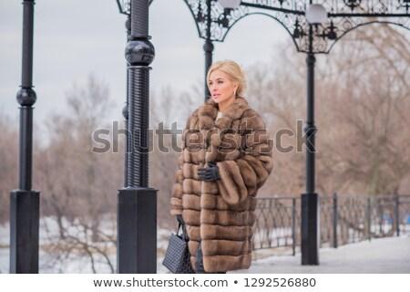 девушки шуба белый портрет заморожены женщину Сток-фото © zastavkin