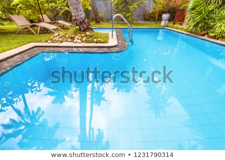 Swimming Pool and nice Palm Stock photo © Hasenonkel