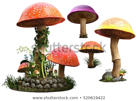 3d mushroom Stock photo © 4designersart