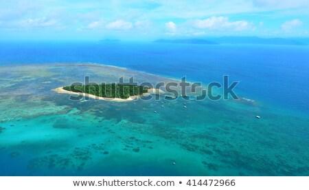 verde · isla · árbol · carretera · nube - foto stock © WaD