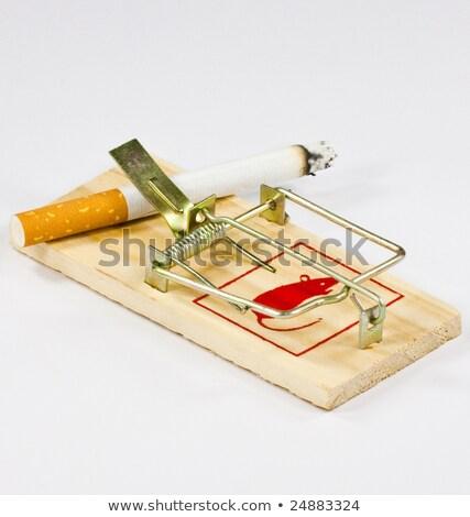 мыши · ловушка · сигарету · бумаги · древесины · смерти - Сток-фото © carenas1