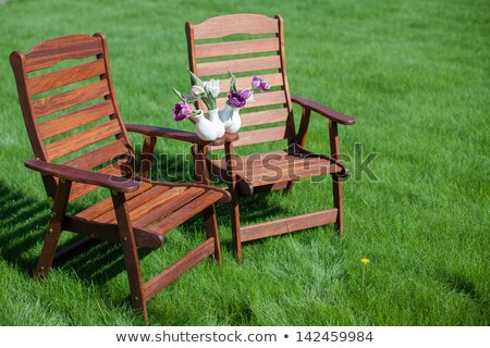 two wood chairs on the grass with vase of flowers on them stock photo © travnikovstudio