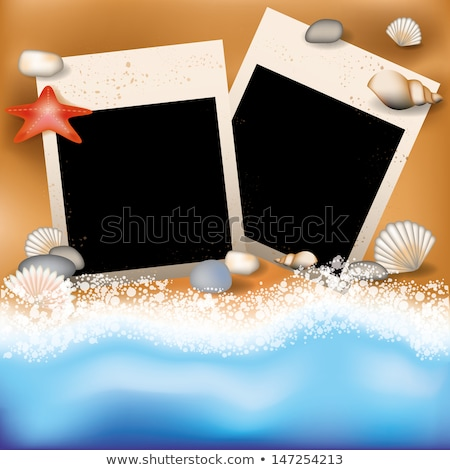 Summer photoframe with starfish, vector illustration Stock photo © carodi