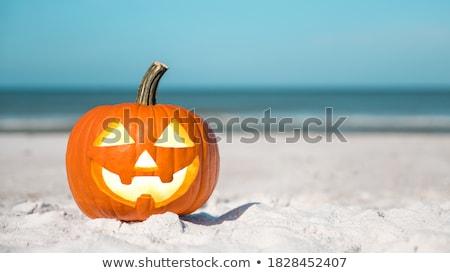 Halloween plaj tropikal fener dışarı gıda Stok fotoğraf © KonArt