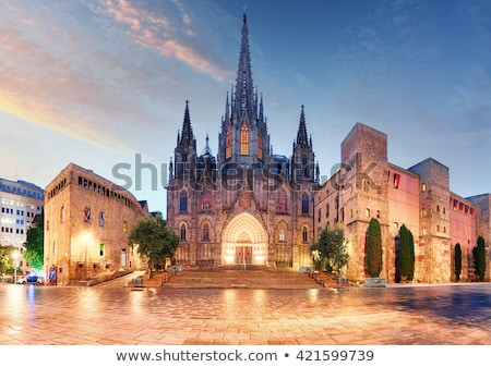 Gotik Barcelona katedral gökyüzü Bina Stok fotoğraf © artjazz