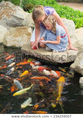 mulher · isolado · branco · mão · peixe - foto stock © bloodua