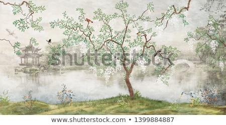 Tapéta szín klasszikus fal dekoráció terv Stock fotó © scenery1