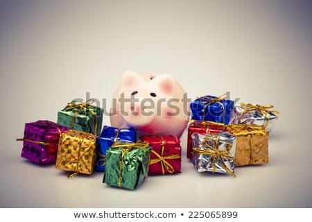 cerdo · dinero · cuadro · Navidad · regalo · blanco - foto stock © jarin13