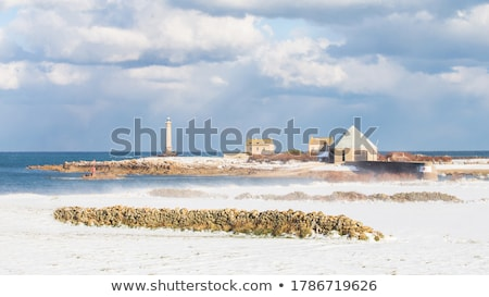 lighthouse cap de la hague normandy france stock photo © phbcz