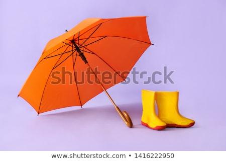 the orange gumboots Stock photo © flipfine