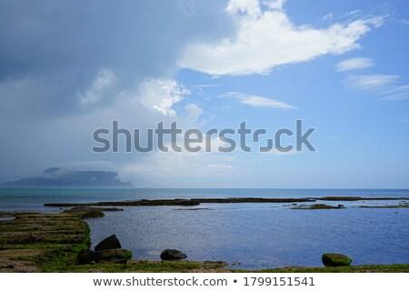 islandic coast stock photo © alexeys