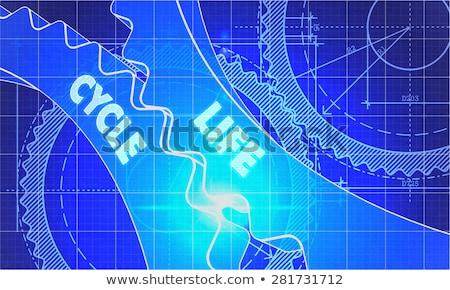 Life Cycle on Blueprint of Cogs. Stock photo © tashatuvango