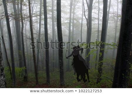 Mooi meisje paardenrug paard meisje natuur sneeuw Stockfoto © fanfo