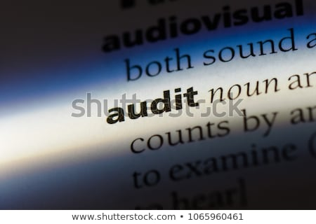 Definition of the word Audit in a dictionary Stock photo © Zerbor