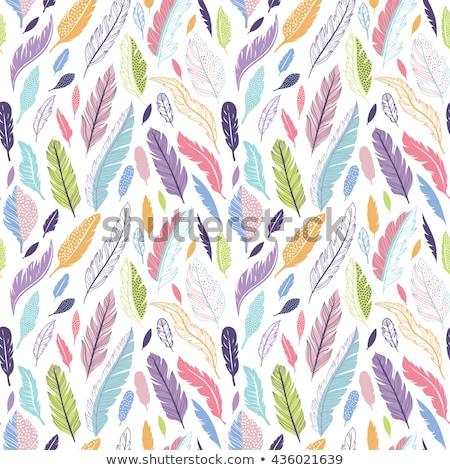 geometria · flores · camomila - foto stock © balabolka