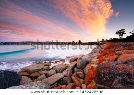 Scenic Lookout Freycinet Tasmania Stock photo © roboriginal